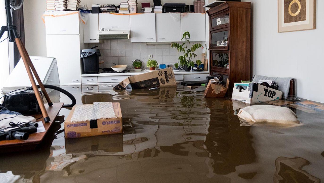 Powódź w Niemczech (fot. Sanne Derks/Getty Images, zdjęcie ilustracyjne)