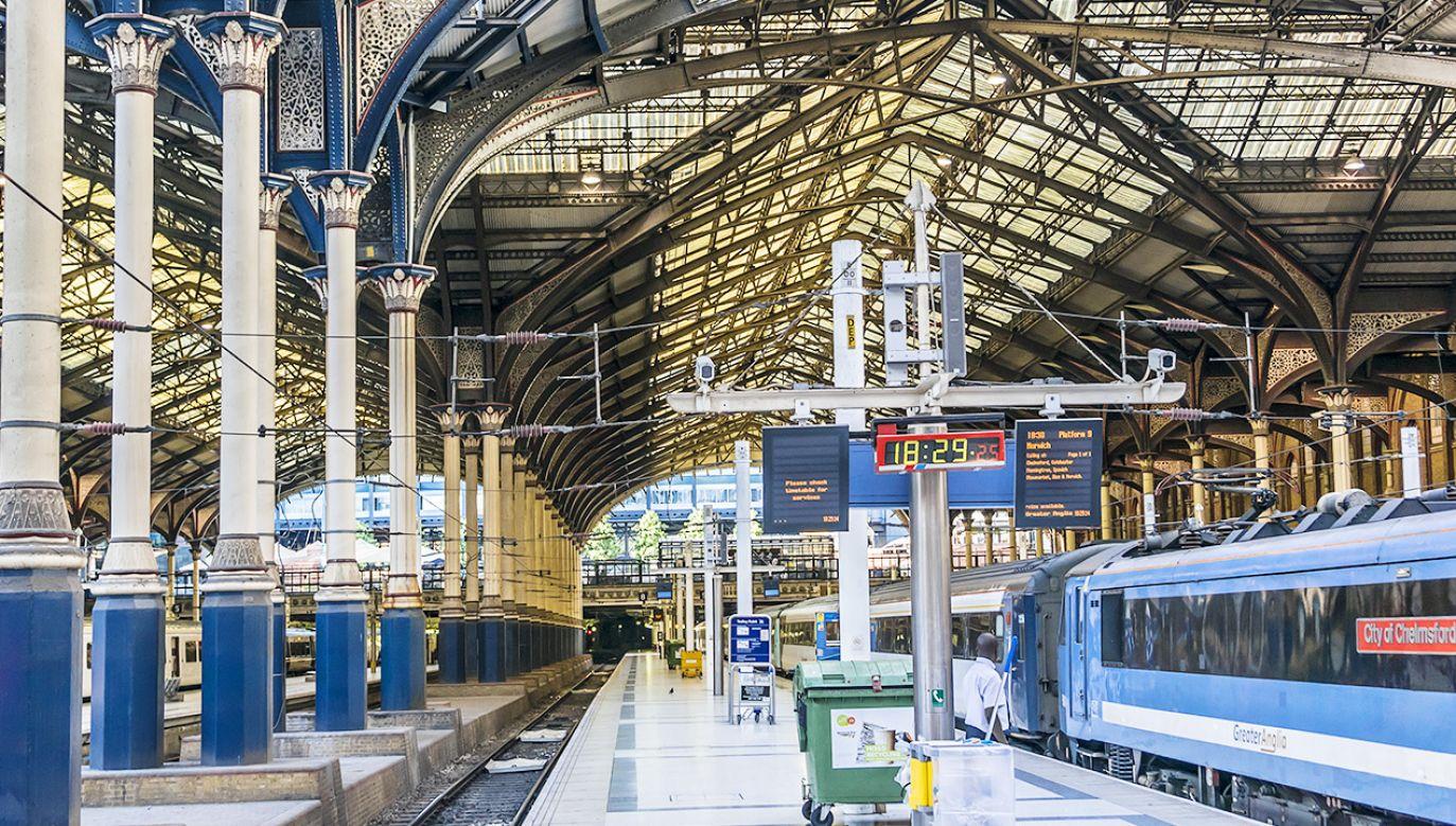 Firma przewozowa przeprasza za komunikat, który oburzył pasażera (fot. Shutterstock)