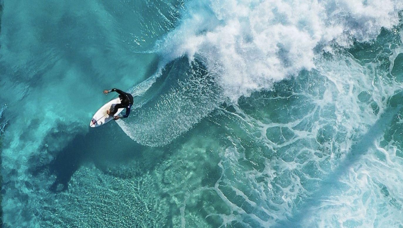 Jednak dopiero, kiedy surfer dopłynął do brzegu dowiedział się, że rekin był tuż za nim (fot. PAP/EPA, zdjęcie ilustracyjne)