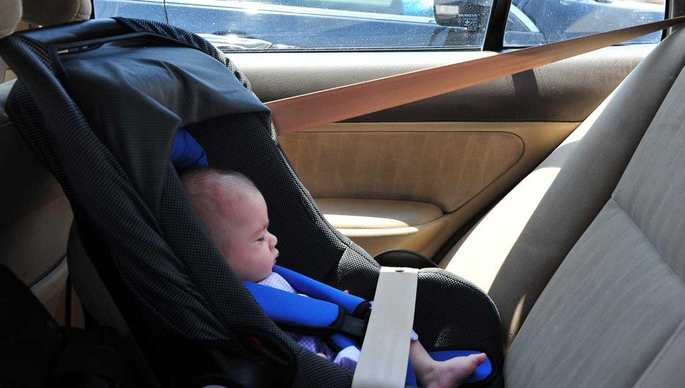 Temperatura wewnątrz zamkniętego auta może błyskawicznie przekroczyć 50 st. C. (fot. Shutterstock/ChameleonsEye)