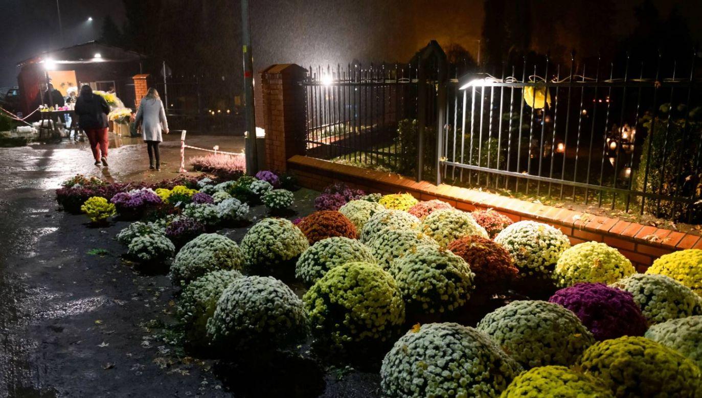 Chryzantemy przed cmentarzem parafii Matki Boskiej Częstochowskiej w Poznaniu (fot. PAP/Jakub Kaczmarczyk)