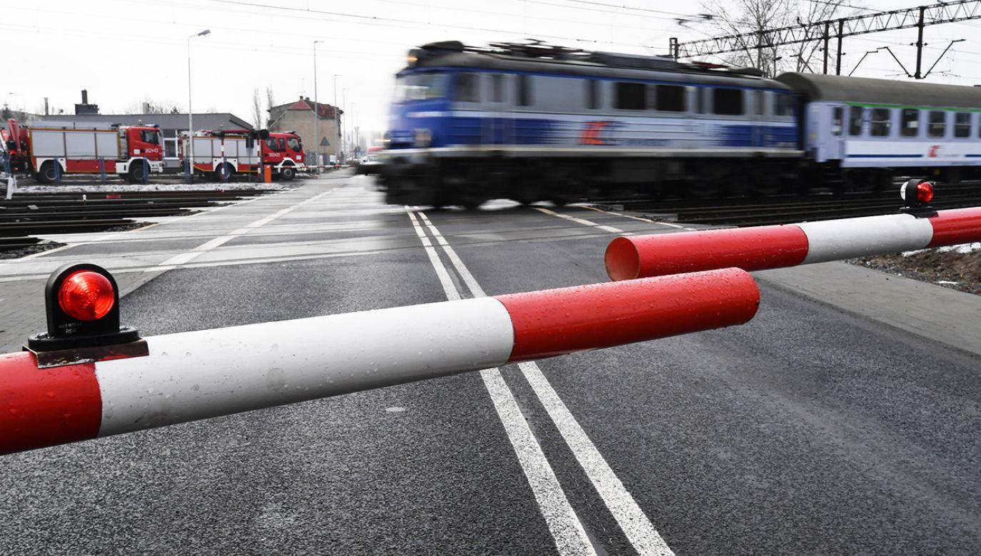 Problemem, według PLK, jest między innymi niska świadomość kierowców (fot. arch. PAP/Marcin Bielecki)