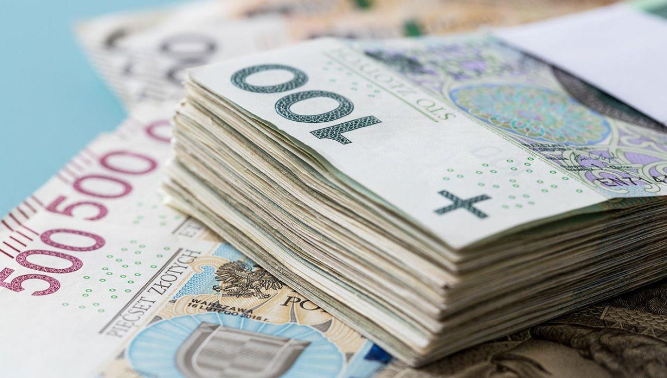 """""""Warto promować go jako walutę rezerwową dla innych krajów"""" (fot. Shutterstock/Andrzej Rostek)"""