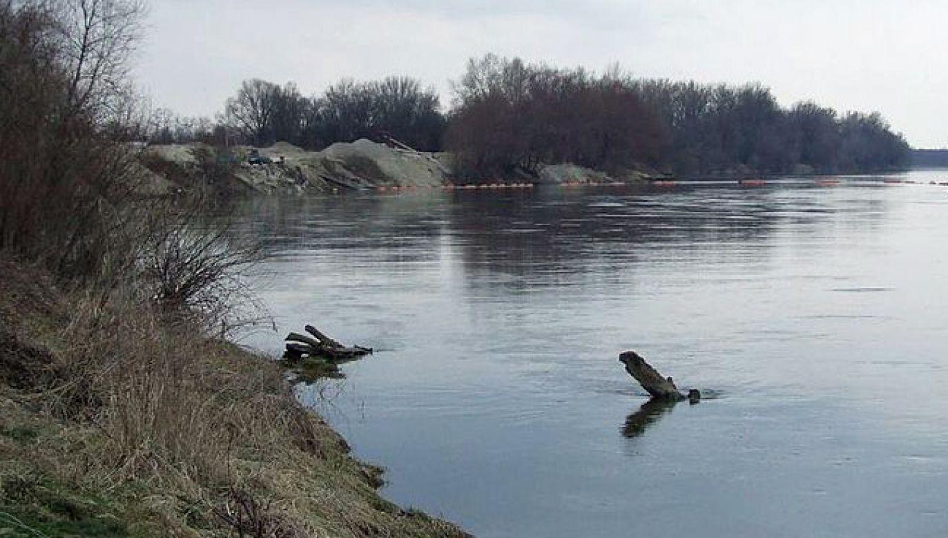 Odkrycia dokonano w Wiśle na wysokości Łomianek Dolnych (fot. Wikipedia/Hubert Śmietanka)