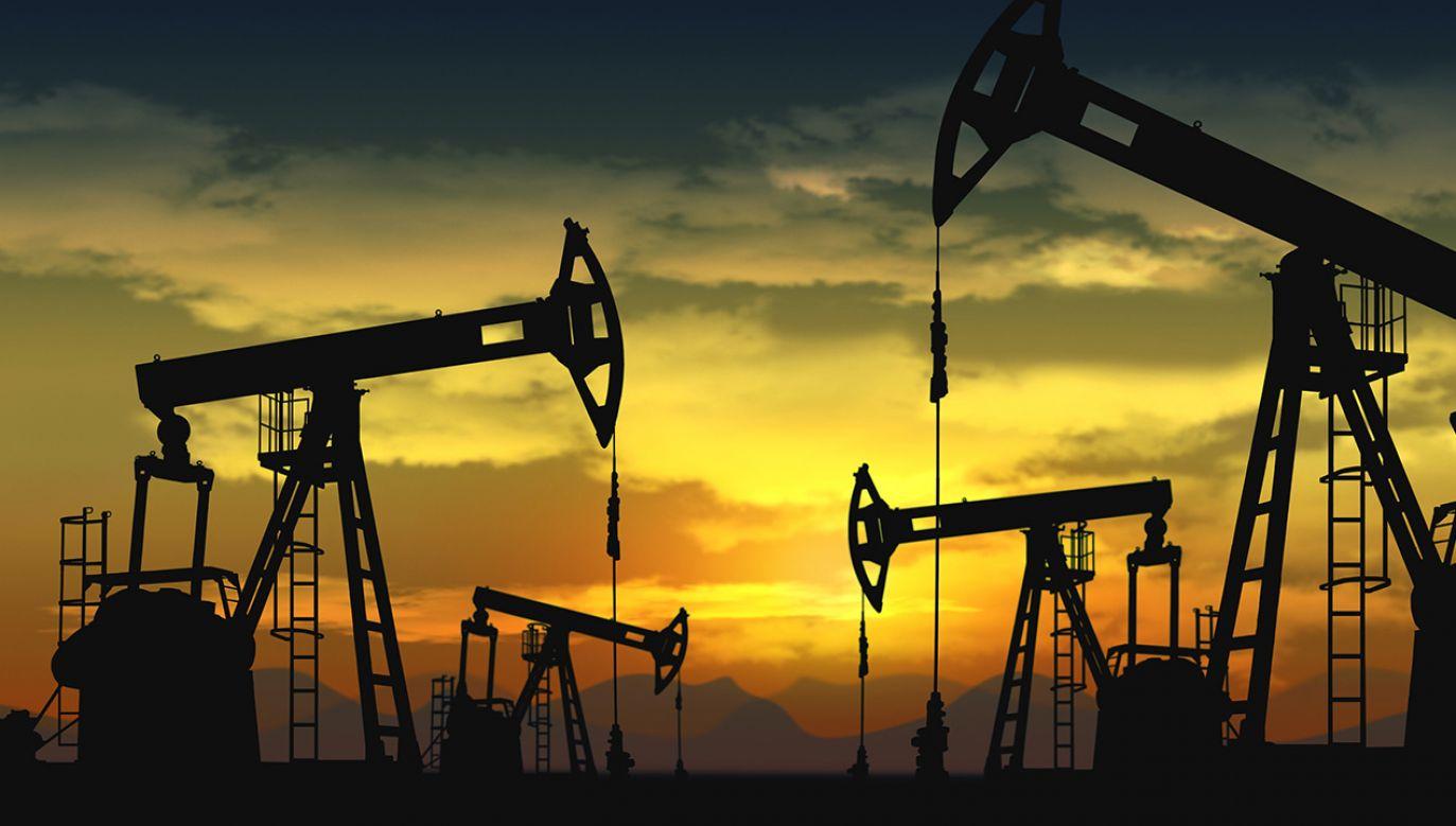 Cena ropy Brent spadnie do 20 dol. za baryłkę, a inne będą jeszcze tańsze (fot. Shutterstock/Robert Lucian Crusitu)