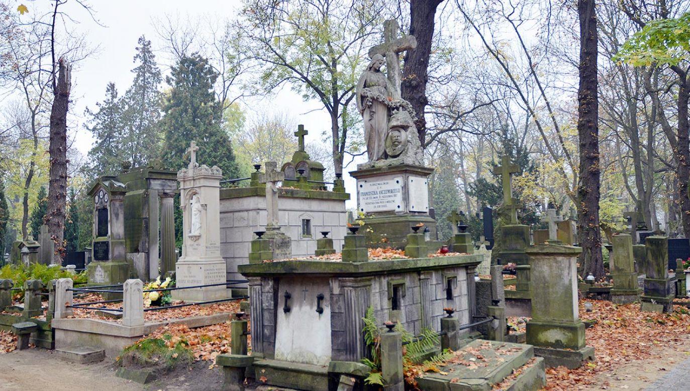 Aplikacja pomoże odnaleźć groby (fot. Shutterstock)