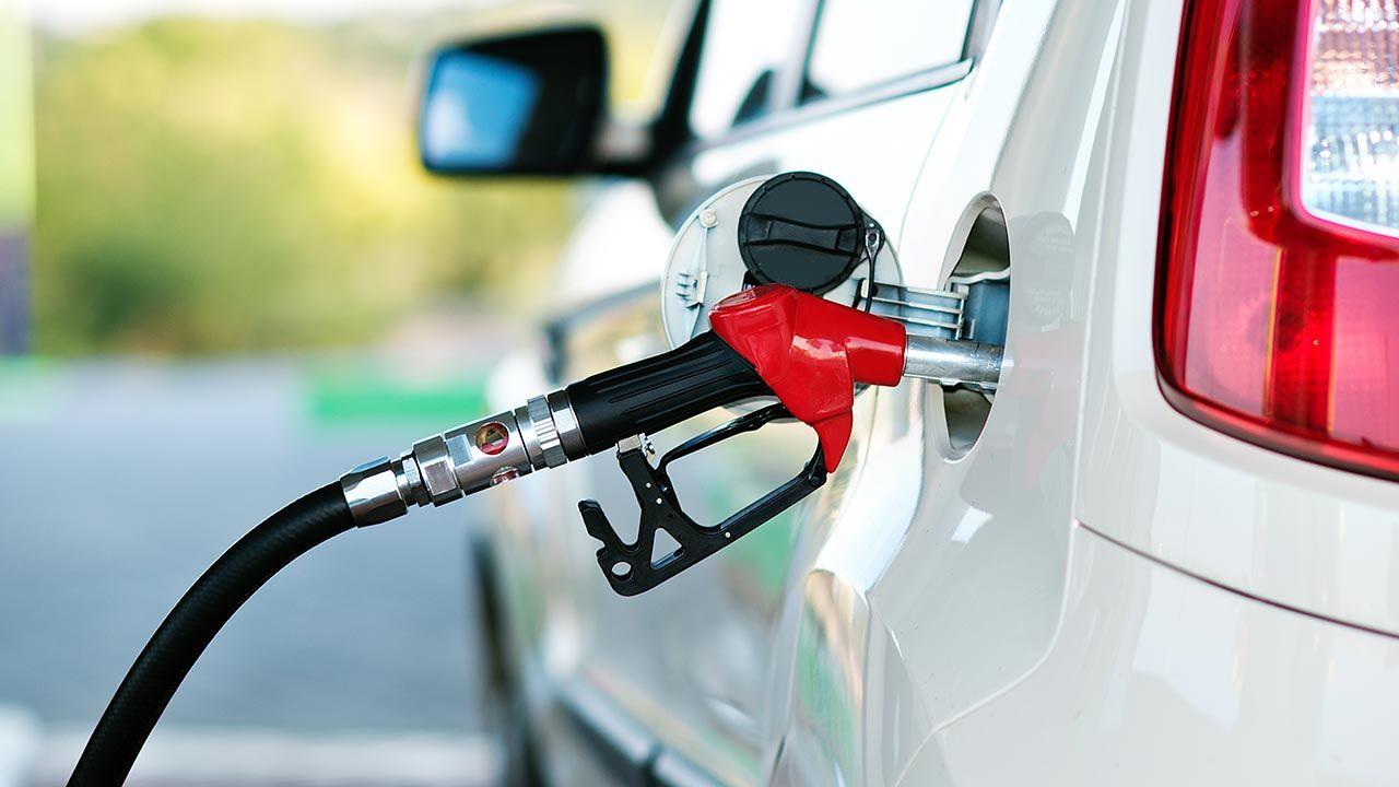 Niskie ceny paliwa to dobra wiadomość dla kierowców (fot. Shuttersotk/nata-lunata)