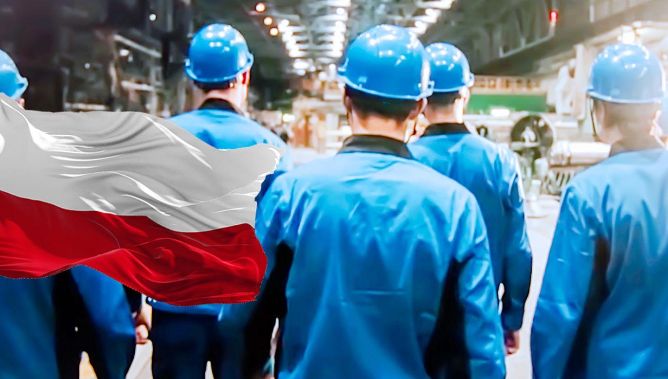 Obecnie poziom zatrudnienia w Polsce jest o 1,3 punktu proc. wyższy od średniej unijnej (fot. Shutterstock)