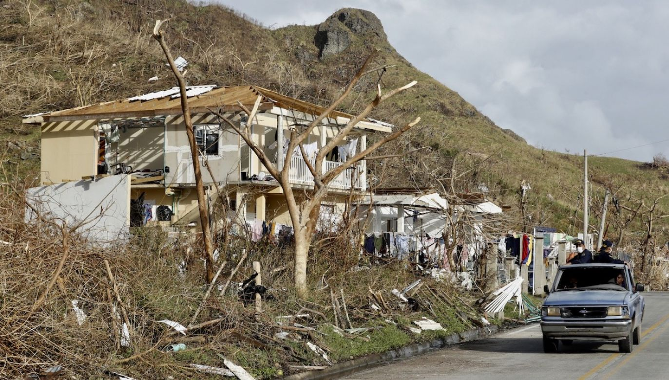 W tym roku ich liczba przewyższyła średnią o 150 proc. (fot. PAP/EPA/Mauricio Duenas Castaneda)