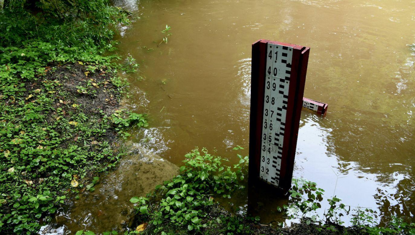 Pracownicy IMiGW podczas pomiarów na rzece Grabince w Głowaczowej (Podkarpackie) (pow. dębicki), na której został przekroczony stan alarmowy/ Podkarpacie(fot. PAP/Darek Delmanowicz)