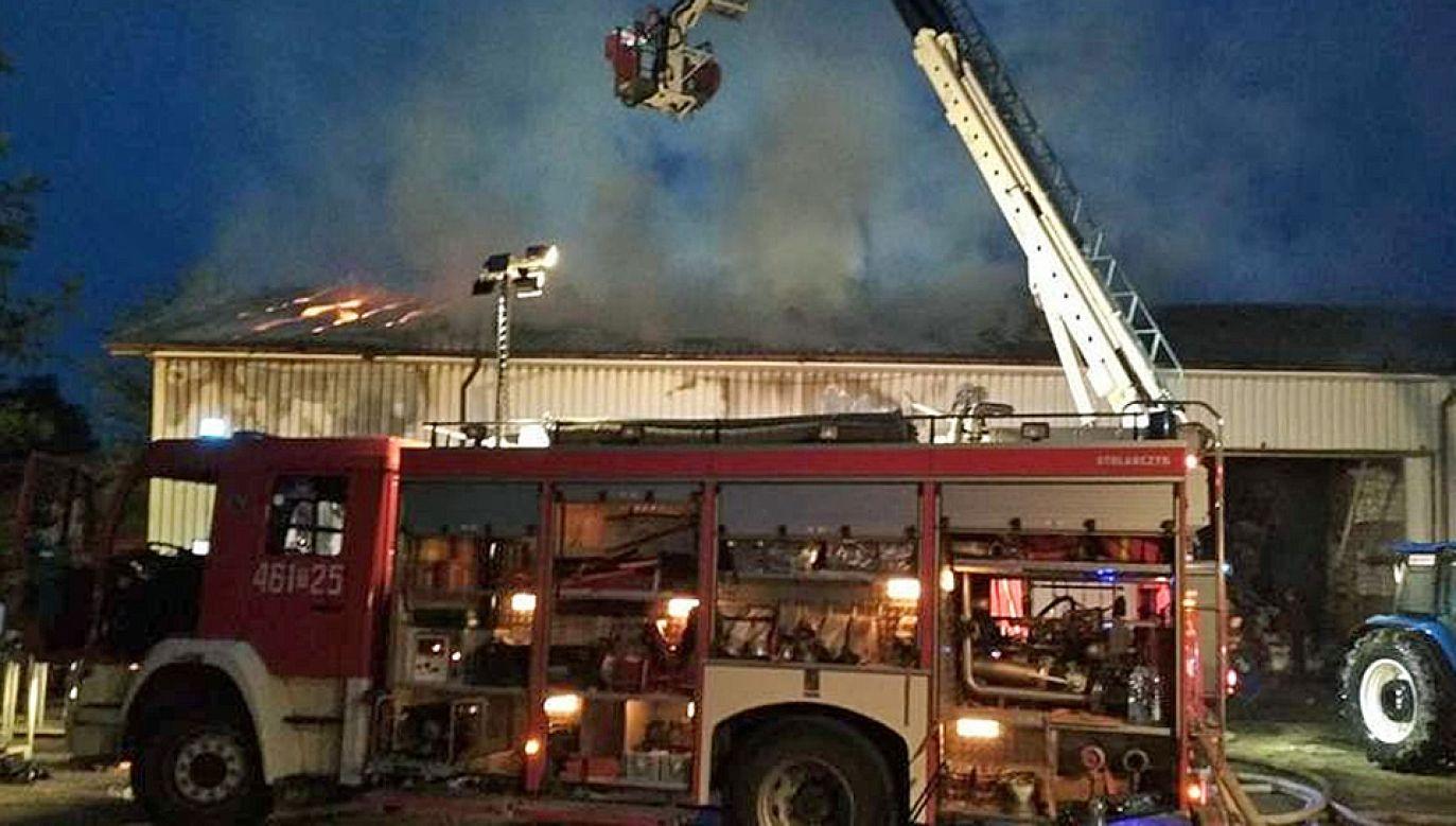 Przyczyną pojawienia się ognia mogło być zwarcie instalacji elektrycznej (fot.  Straż pożarna Pińczów)