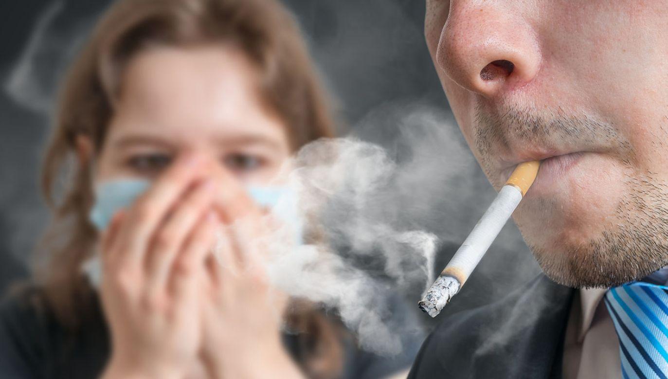 W 2011 r. paliło 31 proc. Polaków, a obecnie 21 proc. (fot. Shutterstock/vchal)