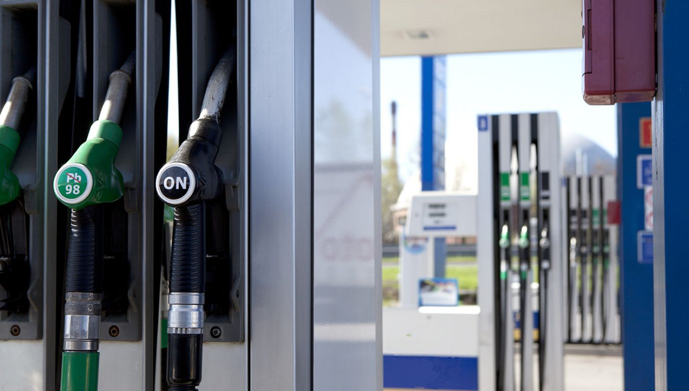 Analitycy prognozują ceny na stacjach paliw (fot. Shutterstock/oleksa)