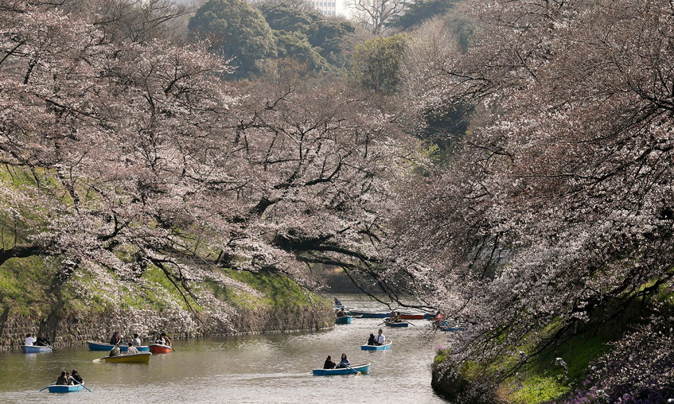 (fot. arch. PAP/EPA/KIMIMASA MAYAMA)